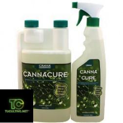 Cannacure 1L y Spray listo para usar
