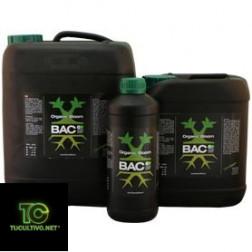 BAC organic bloom