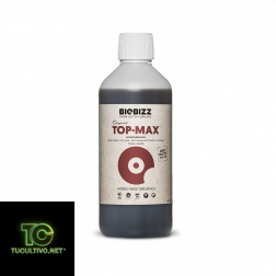 Top Max